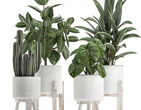 Collection of decorative plants in white flowerpots 923 3D