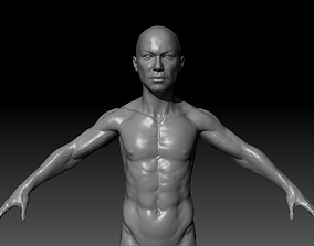 Human Asian Body Anatomy Base Mesh 3D asset
