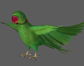 3D Green Parrot