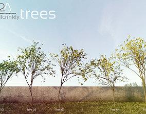 3D tree arb