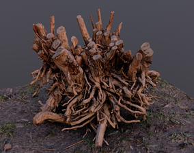 3D Amazing hi-poly root