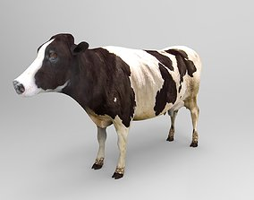 3D asset Cow Rigged cattle game ready low poly