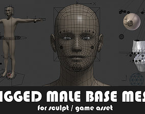 Fully Rigged Male Base Mesh with Face Rig for 3D asset