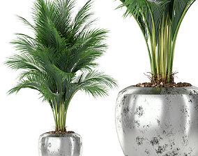 3D model Plants collection 400