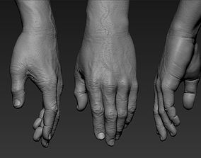 3D Hand Zbrush Realistic