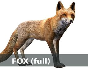3D asset Fox male