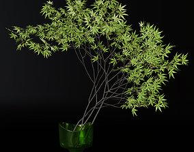3D Decorative branch japanese maple