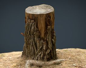 Tree Stump 3 3D asset