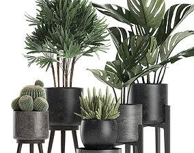 3D bush Plants in a black pot for the interior 662