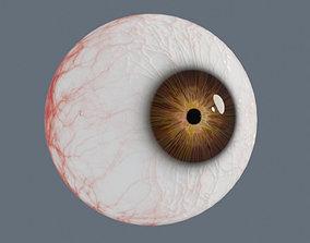 pupil Eyeball 3D