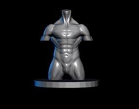 Male Torso 3D asset low-poly