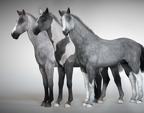 3D Rigged and Animated Stallion