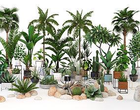 Plants tropic 3D model