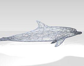 Dolphin Wireframe 3D model light