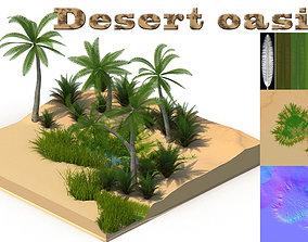 Desert oasis 3D asset