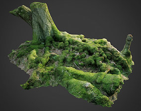 3d scanned nature forest roots 005