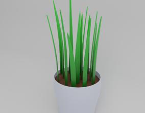3D model Minimal desk pot plant