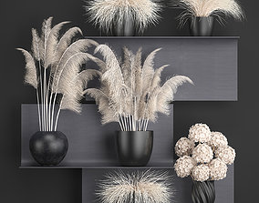 3D Collection of dried flowers in vases 91