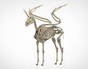 3D model bones Alicorn Skeleton