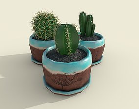 Cacti set 3D model
