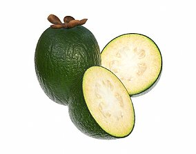 Feijoa tropical fruit whole cut in half 3D model