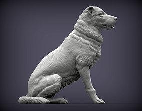 Central asian shepherd dog 3D print model