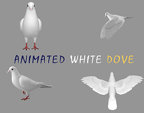 3D model Realistic Animated White Dove Low-poly