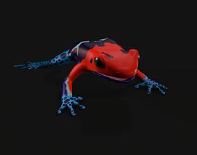 Dart frog 3D asset