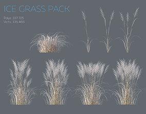 3D Winter Grass