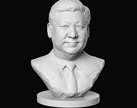 Xi Jinping 3D print model