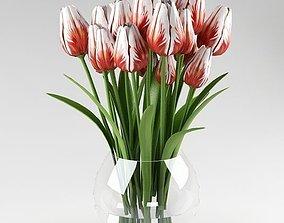 Ornamental plant 12 3D model