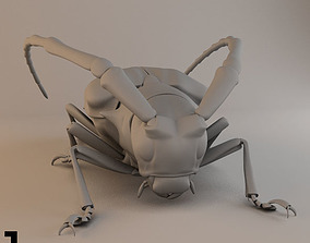 3D model Insects and Beetles Pack - 60 pcs