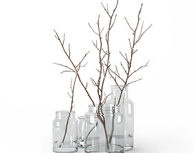 3D Branches in glass jars