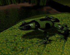 3D Grenouille-Frog