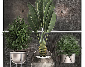 Decorative plants in flower pots for the interior 469 3D