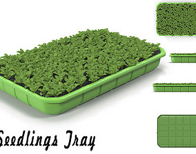 3D model Seedlings Tray 3
