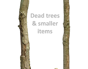 Woodland Photoscan Objects - smaller items and dead 3D