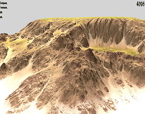Terrain plant 3D model