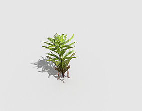 hedge Plant 3D asset game-ready