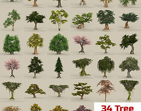 3D model Game Ready Biggest Tree Collection