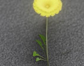 Low-Poly Dandelion Flower Version 3 - Object 9 3D asset