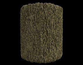 PBR Scanned Tree Bark 3D trunk
