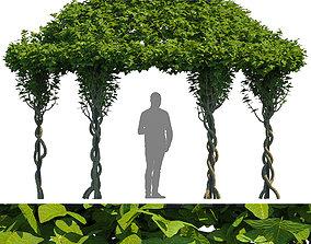 Gazebo Greenery 3D model