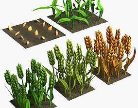 Barley Cartoon Stages of Grow 3D model