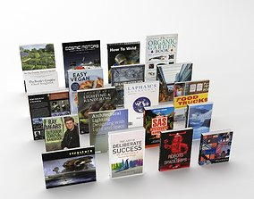 Collection of various paperback books 3D model