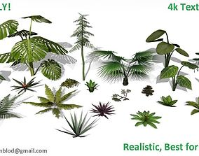 3D asset game-ready forest Low poly Foliage Pack