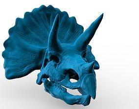 Triceratops Skull - 3D model