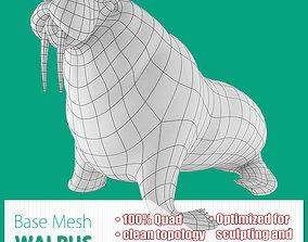 3D model Walrus Base Mesh