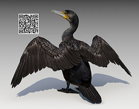 Great Cormorant 3D model animated