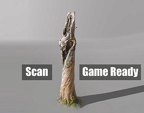 3D model Tree dead 03 Scan